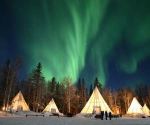 aurora, sky, and tents image