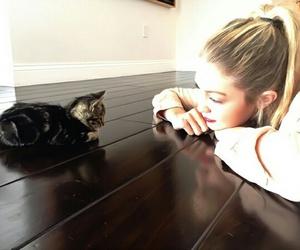 gigi hadid, cat, and model image