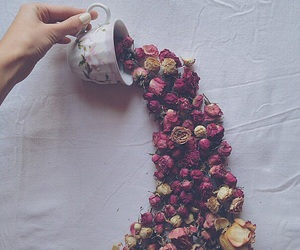 flowers, roses, and cup image