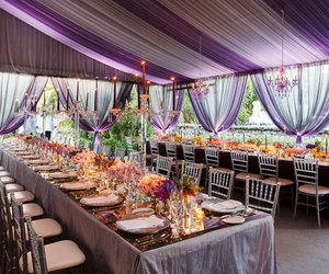 purple, reception, and wedding image