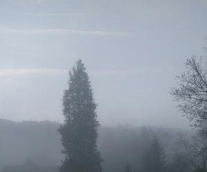 just woke up, mountains, and morning image
