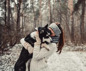 aww, siberian husky, and huskypuppy image