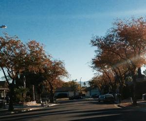 autumn, light pole, and blue image
