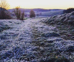 frost, winter, and nebel image
