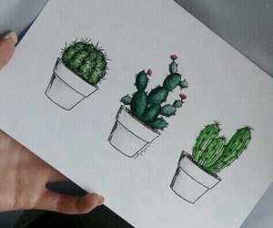 cactus, art, and drawing image