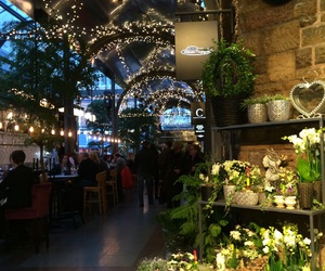 aesthetic, flowers, and lights image