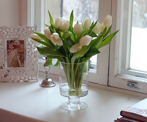 flowers, white, and frame image