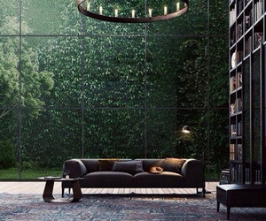 home, library, and book image