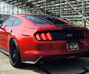 gt, history, and mustang image