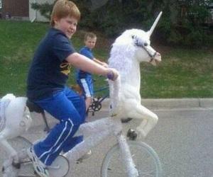 funny and unicorn image