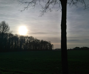 december, sun, and winter image