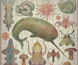 Animales, mar, and art image