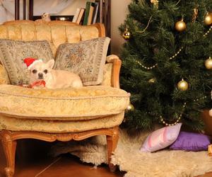 christmas tree, santa, and new year image