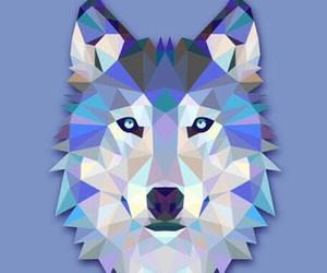 wolf image