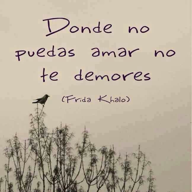 Frida Kahlo Frases Tumblr Buscar Con Google
