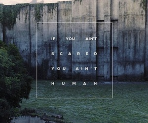 the maze runner, human, and quotes image
