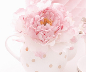 cups and beddinginn reviews image