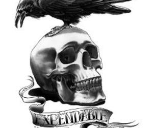 crow, skull, and expendables image