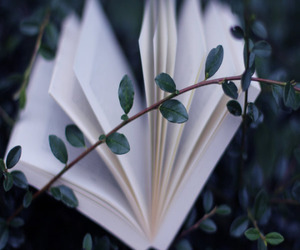 book, leaves, and green image