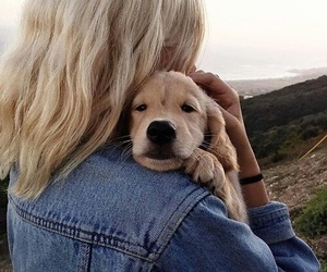 dog, cute, and girl image