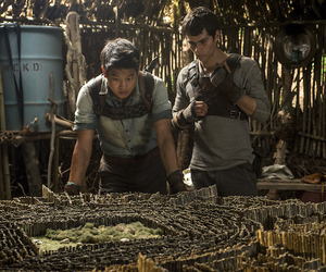thomas, maze runner, and Minho image