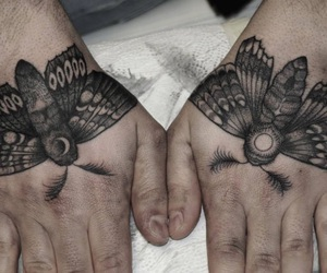 art, line, and moth image