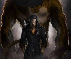 one piece, anime, and lucci image