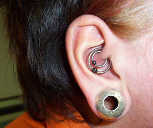 cool, piercing, and ears image