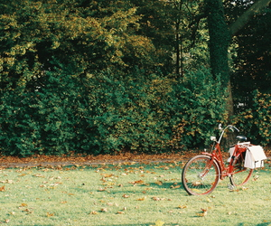 bike, vintage, and nature image