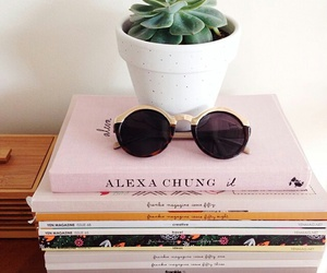 book, plants, and sunglasses image
