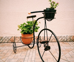 bike, cicle, and decoration image