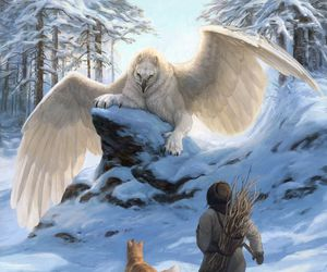 fantasy and griffin image
