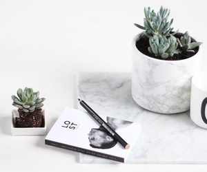 white, marble, and plants image