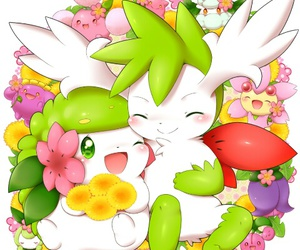 pokemon, cute, and shaymin image