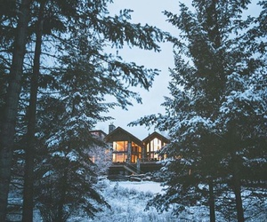 snow, forest, and house image