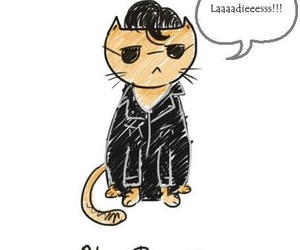 alex turner, arctic monkeys, and cat image
