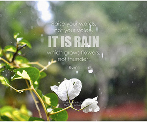 attitude, flower, and inspirational image