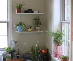 home, interior, and pots image