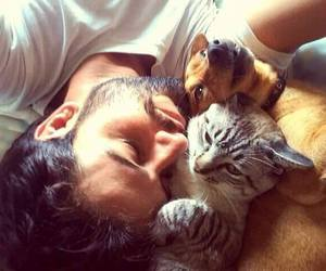 affection, animals, and beard image