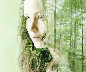 katniss, forest, and the hunger games image