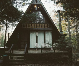 forest, nature, and timber house image