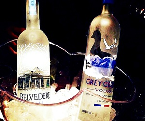vodka, grey goose, and belveder image