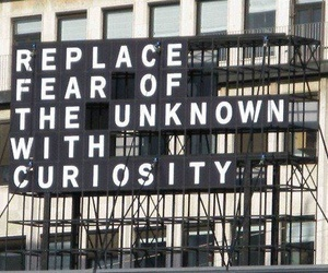 quotes, fear, and curiosity image