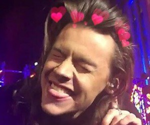 icon, Harry Styles, and layout image