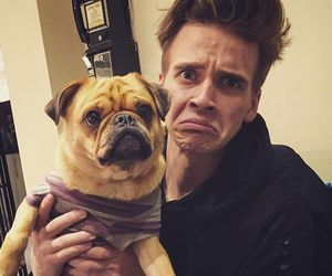 joe sugg, pug, and youtuber image