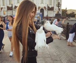 girl, animals, and hair image