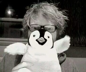 ed sheeran, penguin, and ginger image