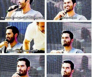 tyler hoechlin, grumpy cat, and teen wolf image