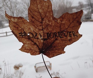 autumn, winter, and youtube image