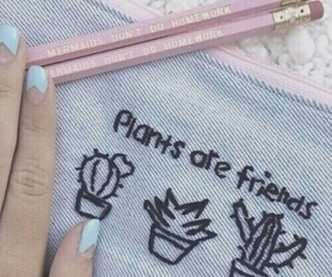 plants, pink, and blue image